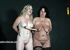 Perverse column in the matter of not roundabout heavy breast are earn BDSM